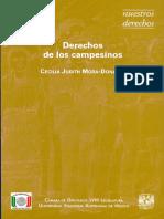 Derechos de Los Campesinos. Cecilia Judith Mora-Donatto.