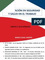 14 - FISCALIZACION EN SST --.pptx