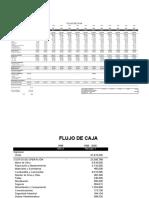 Flujo de Caja Pi 316