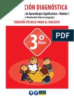 Evaluación Diagnóstica 3° Básico Taller de Desarrollo de Aprendizajes Significativos • Módulo 1.pdf