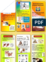 11. Triptico-Diabetes.pdf