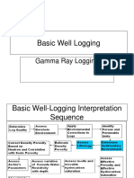 Gamma Ray Logging_MS