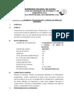 SILABO PPCO 2019.doc