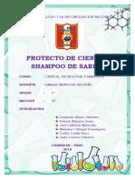 INFORME PROYECTO DE CIENCIA SHAMPOO DE SABILA.docx