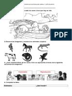 Guías Ciencias 1° Básico