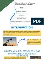 PRESENTACIÓN INTRODUCCIÓN.pptx