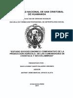 TESIS AN142_Naj.pdf