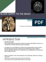 Blood Supply to Brain