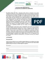 1.- Los Picos Como Herramientas Estudiante Indagatoria (1)