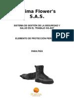EPP PIES.doc