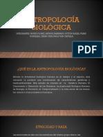 ANTROPOLOGIA BIOLOGICA.pptx