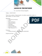 Formato Para Desarrollo de Preinforme o Informe