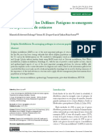7023-Article Text-36021-1-10-20140823.pdf