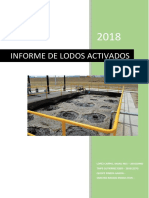 Informe Final de Análisis de Agua (2)