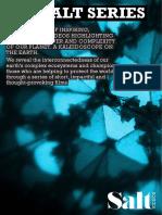 Introducing_Salt_Series.pdf