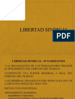 Libertad Sindical1