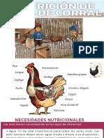 2. Presentación Nutricion y Alimentacion