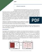 Reporte Difusion Molecular