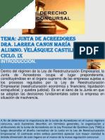 Velasquez_Castillo.pptx