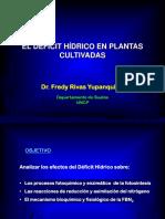 3. Deficit Hidrico Su Efecto en La Fotosintesis-1