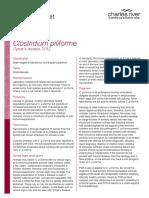 ClostridiumpiliformeTyzzer'sDiseaseTechnicalSheet