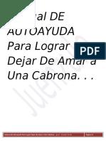 Manual Para Dejar De Amar A Una Cabrona (Juan Enrique ZL)