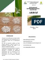 b Boletin Nº 03 Deficiencias Nutricionales Del Arroz 2015