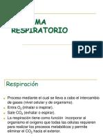 Sistema_respiratorio (1).ppt