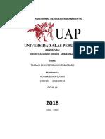Trabajo Academico Indentificacion de Riesgos Ambientales Hugo Mescua Claros
