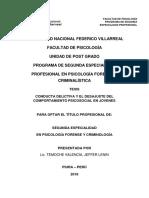 Temoche Valencia Pfc Piura 2019