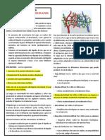 Edema Agudo de Pulmon Fisiopatologia