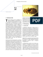 Melophagus Ovinus Articulo 1