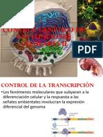 control genético de la célula