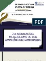 6. Homocistenuria-Deficiencia Del Metabolismo de Los Acidos Ramificados