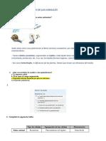 cuestiones y soluciones.docx