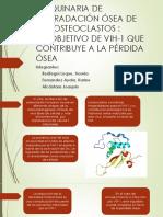 Maquinaria de Degradación Ósea de Los Osteoclastos