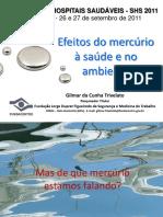 Palestra 1a Gilmar da Cunha Trivelato.pdf