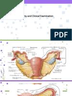 clinical examination.pptx