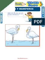 Aves y Mamíferos Para Tercer Grado de Primaria