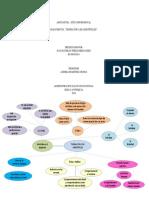 Mapa Mental Teoria de Aristoteles