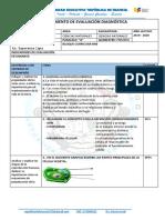 Evaluacion Diagnostica e Informe