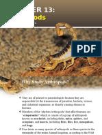 Chapter 13 Arthropods-Torres