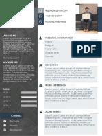 CV Template.pptx