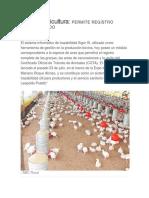 Sigor en Avicultura