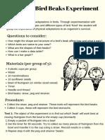 brilliant bird beaks experiment instructions