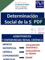 4-Determinacion-Social-ELS-Oscar-Feo.pdf