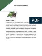 Distintos Sistemas Utilizados en La Hidroponia
