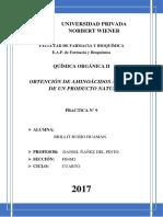 Informe 9 de Organica