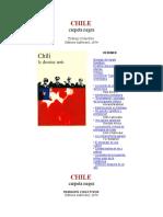 CHILE Carpeta Negra Trabajo Colectivo