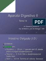 14_ap. Digestivo Tema 14